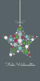 Weihnachtskarte in Grau mit Weihnachtsstern L-DIN Hochformat